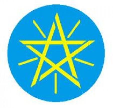 [批發包3磅] 衣索比亞 日曬 古吉 柯爾洽 莎奇洽 G1