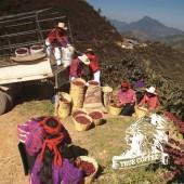 瓜地馬拉 薇薇特南國『一磅』-Guatemala Huehuetenango
